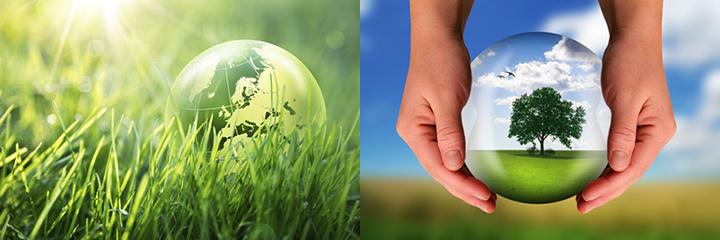 地球環境保全プロジェクト