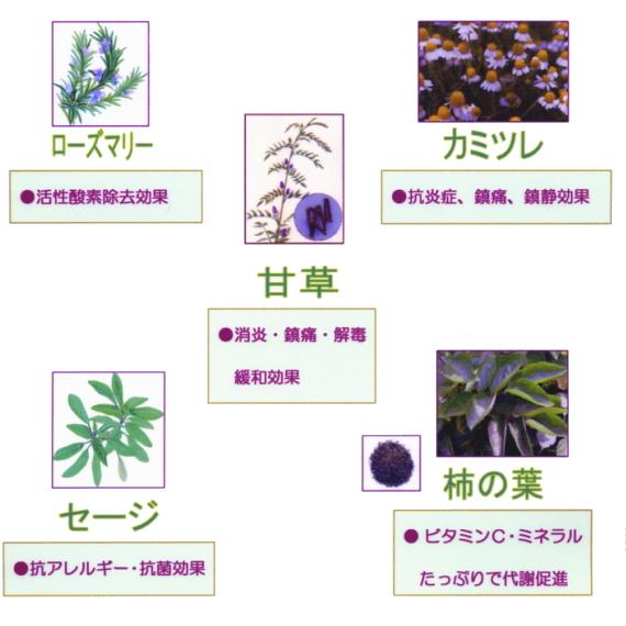 香草・ハーブカラーの改善効果(3)